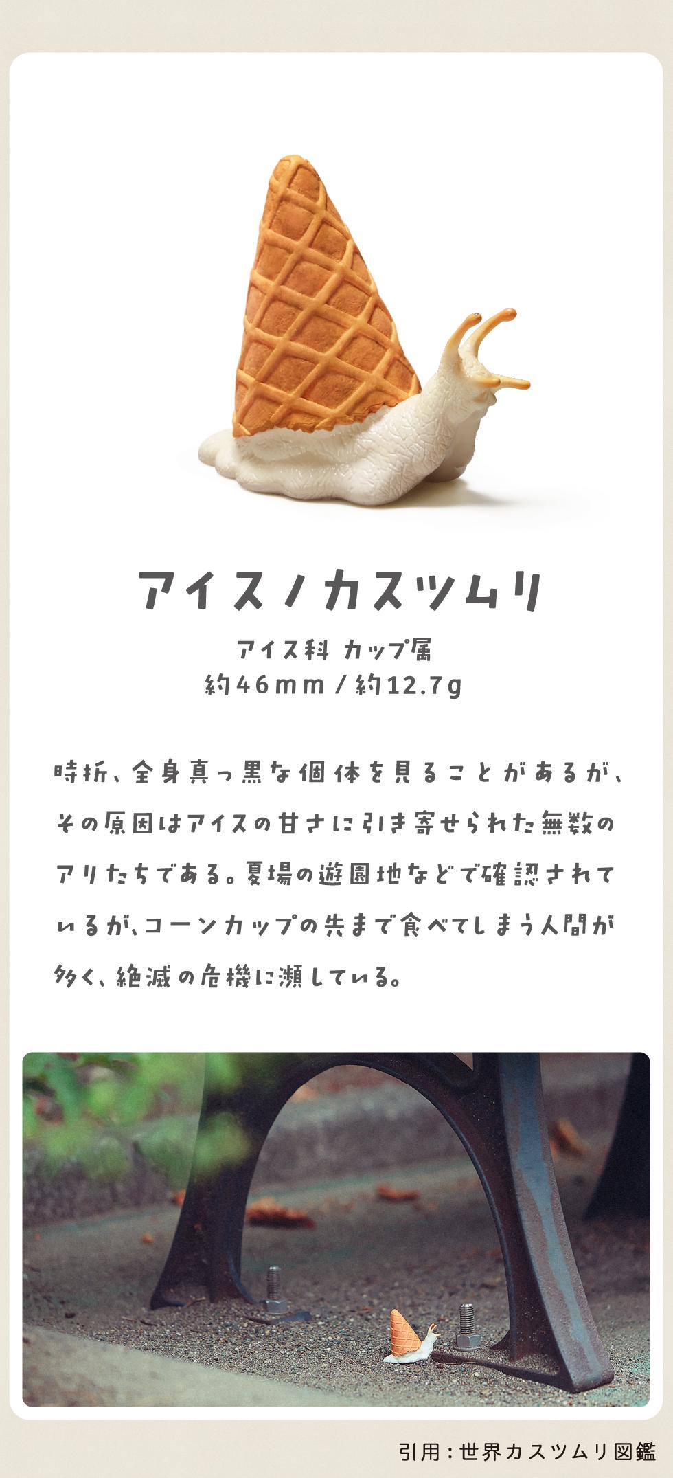 アイスノカスツムリ